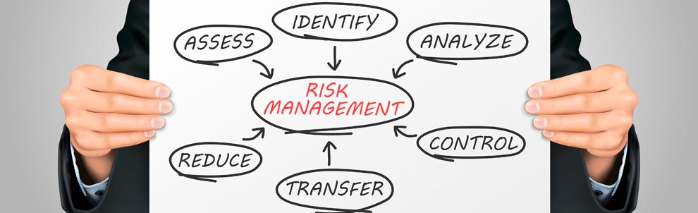 Risk Management chart held by man